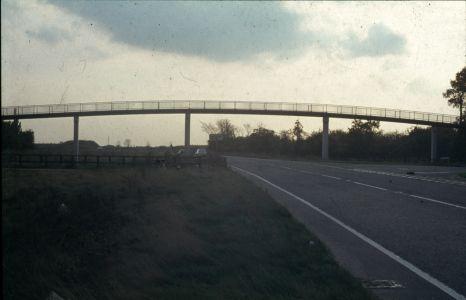 Milton-311