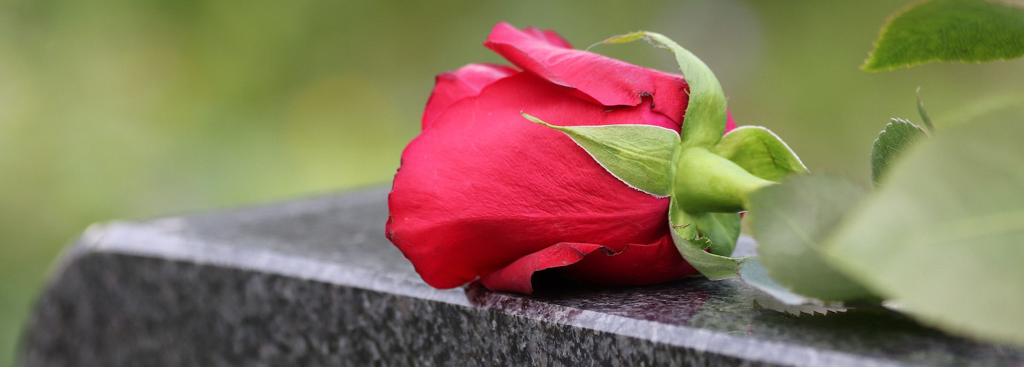 A picture of a rose on top of a headstone